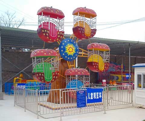 BNFW-008 Single Face Mini Ferris Wheel