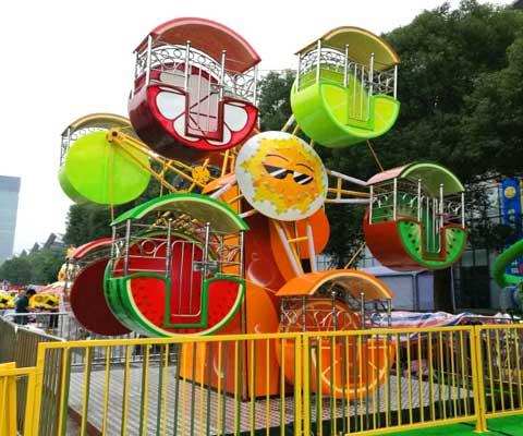 Double-face Mini Ferris Wheel for Sale