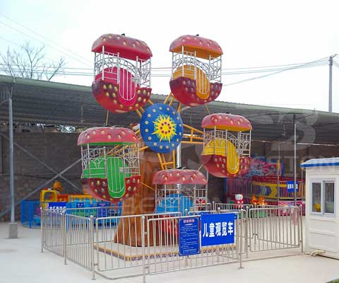 Kids Mini Ferris Wheel