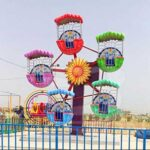 5 Gondolas Mini Ferris Wheel for Sale