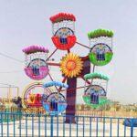 5 Gondolas Mini Ferris Wheel for Sale